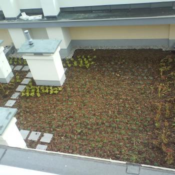 Hydroizolacja dachu zielonego w systemie odwróconym; 200m2