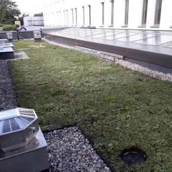 Hydroizolacja dachu zielonego w systemie odwróconym; 800m2